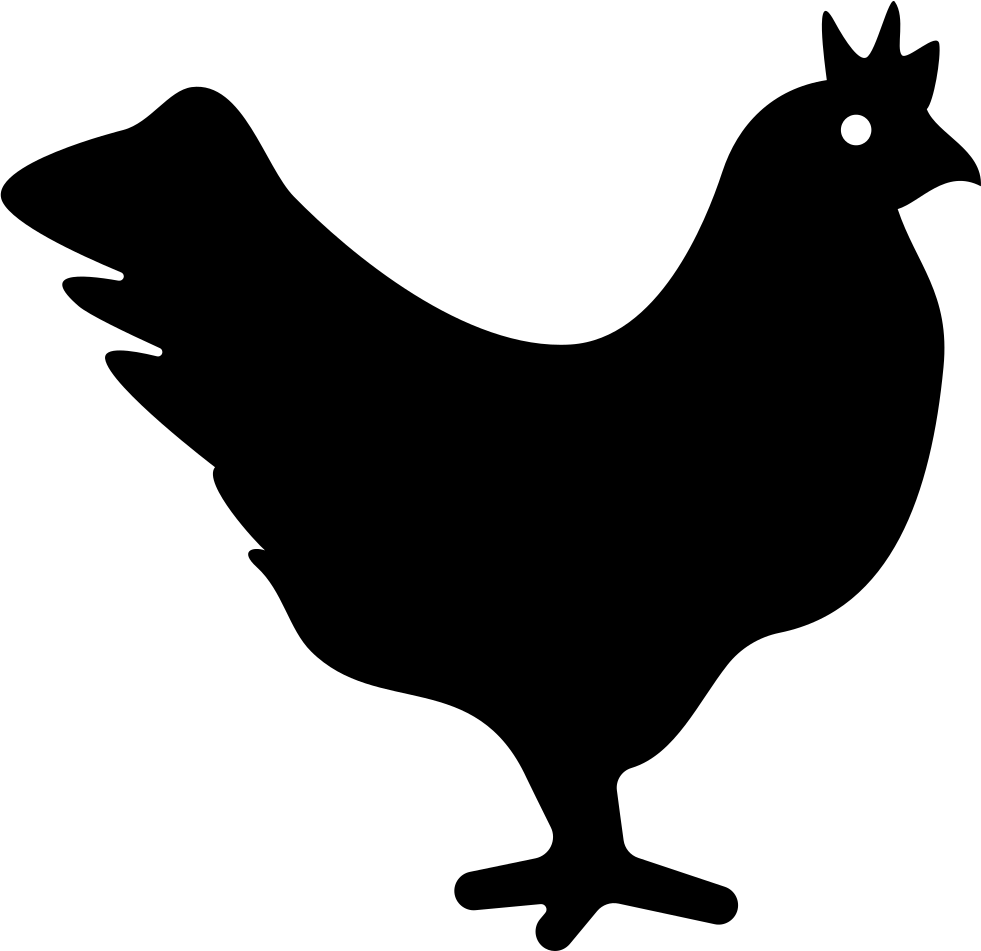 Png icon free download. Clipart chicken svg