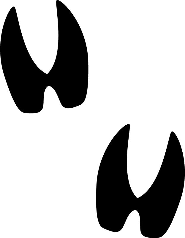 Deer tracks rubber stamp. Track clipart transparent