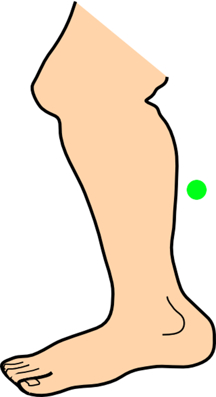 Clipart children body part.  collection of parts