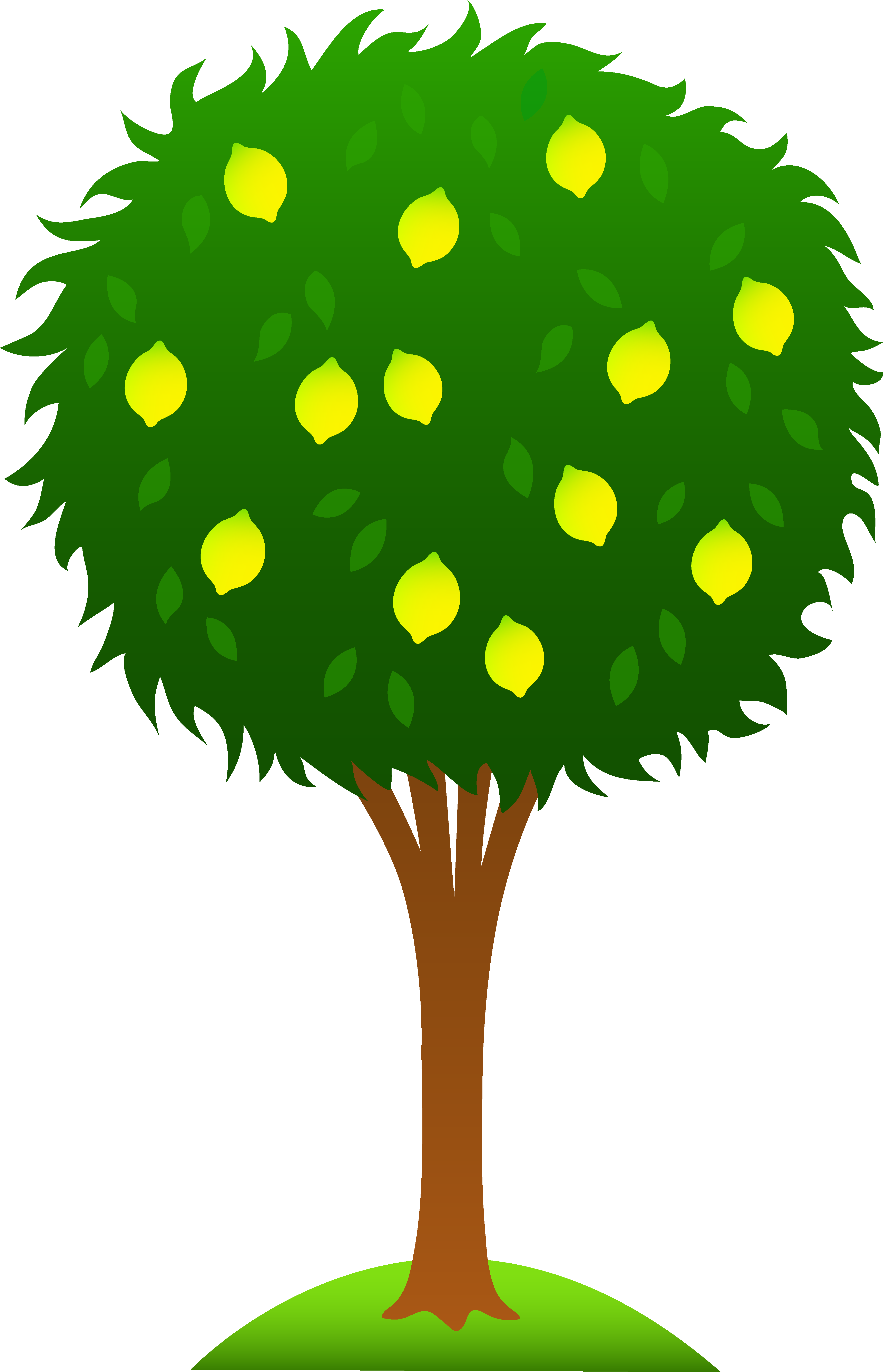 Clipart tree cartoon. Lemon pinterest clip art