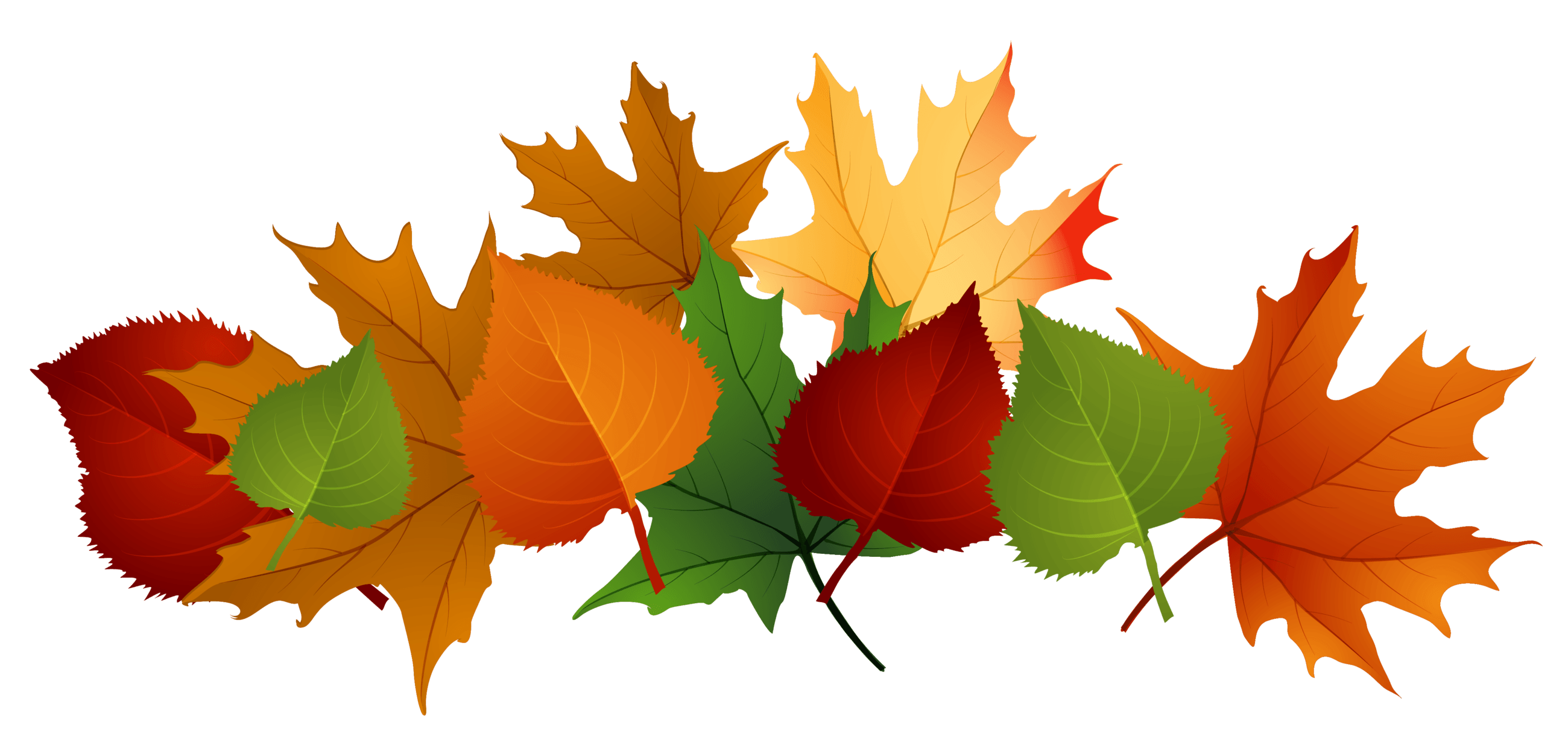 Pile of drawing at. Fall leaves border png