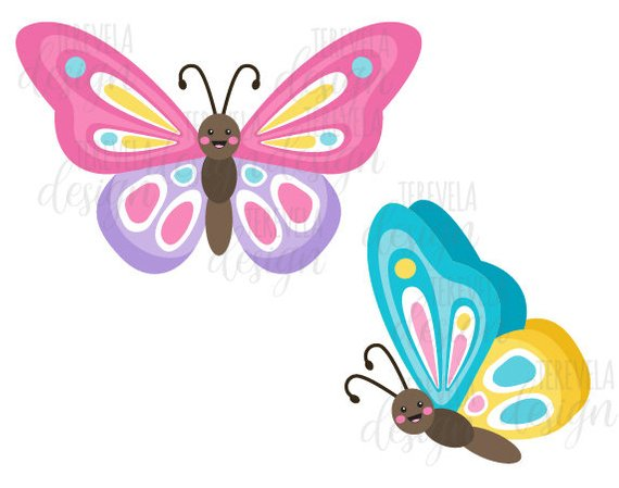 Moth clipart cute.  sale butterflies butterfly