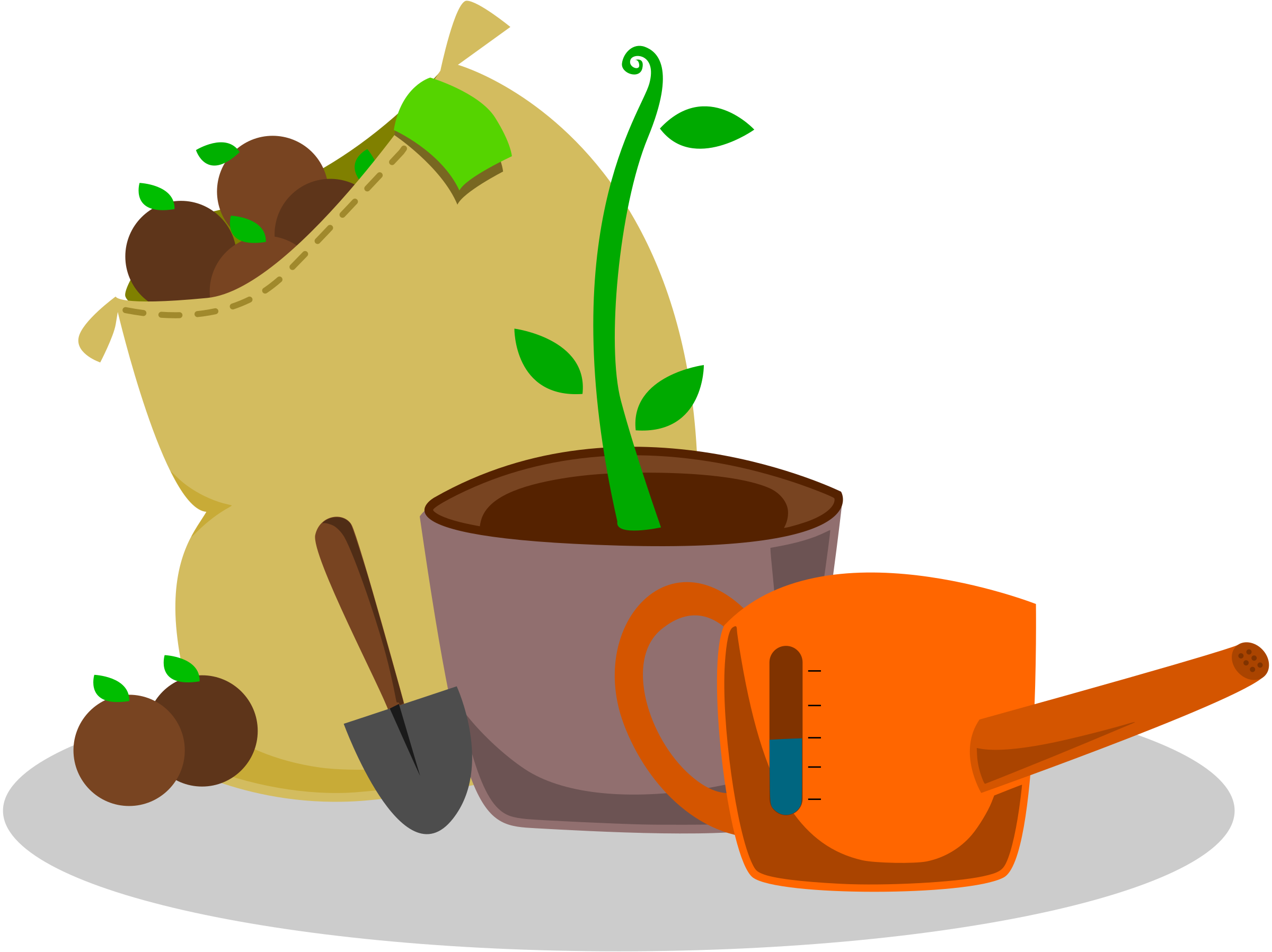 collection of garden. Plants clipart coffee tree