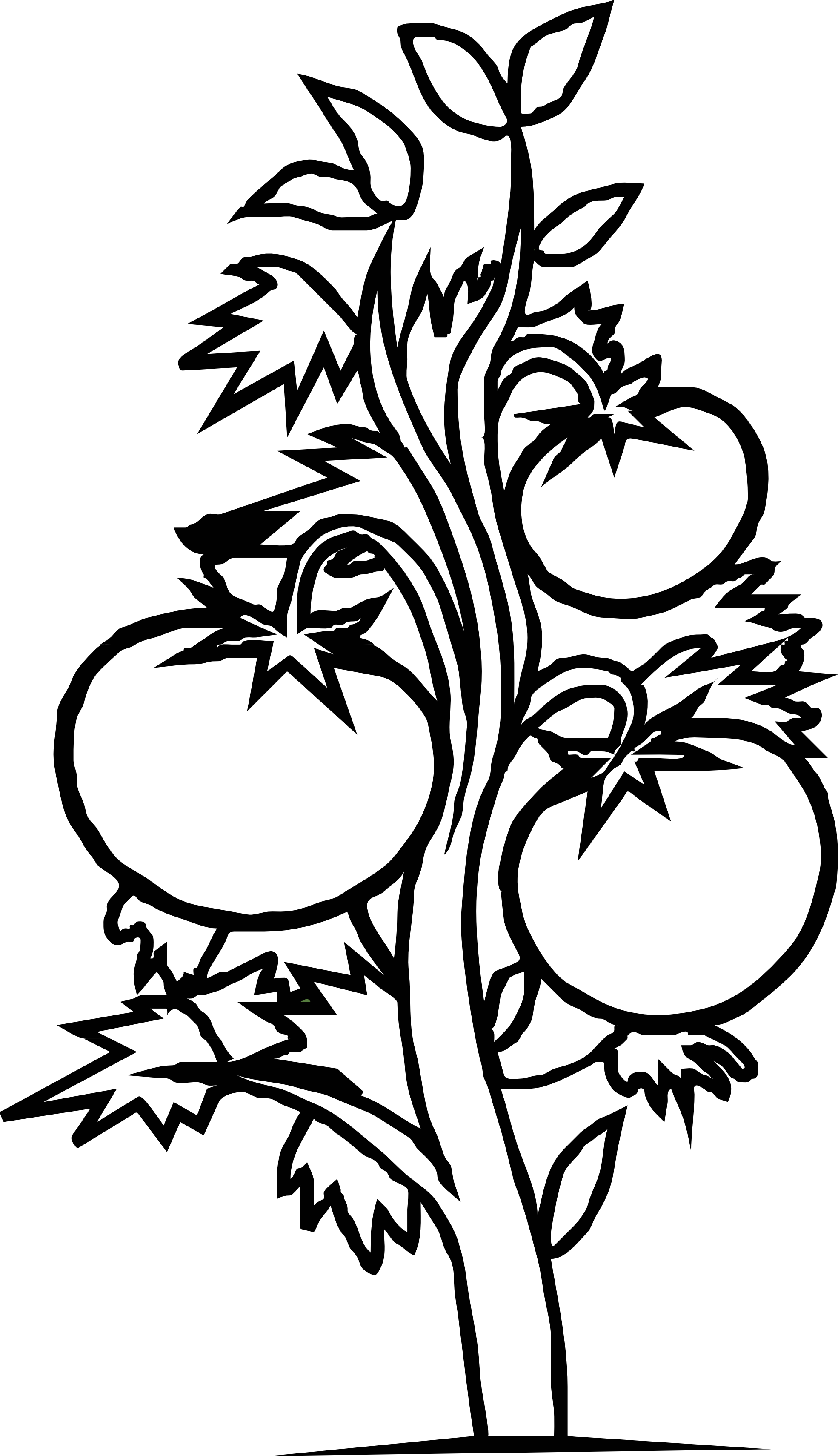 collection of parts. Zucchini clipart black and white