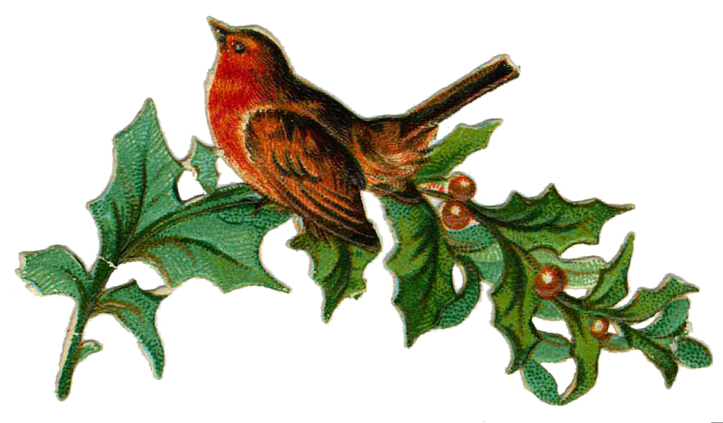 Nest clipart bird victorian.  collection of vintage