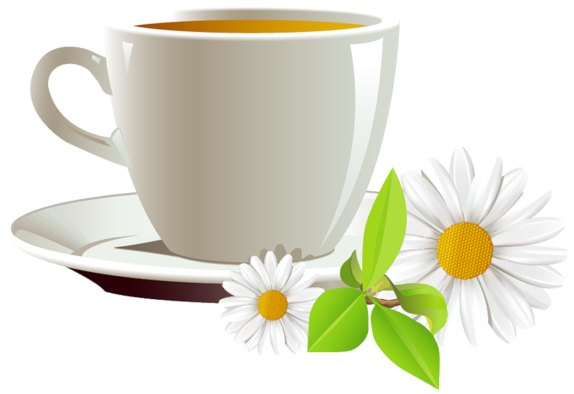 Cup of and daisies. Clipart coffee autumn