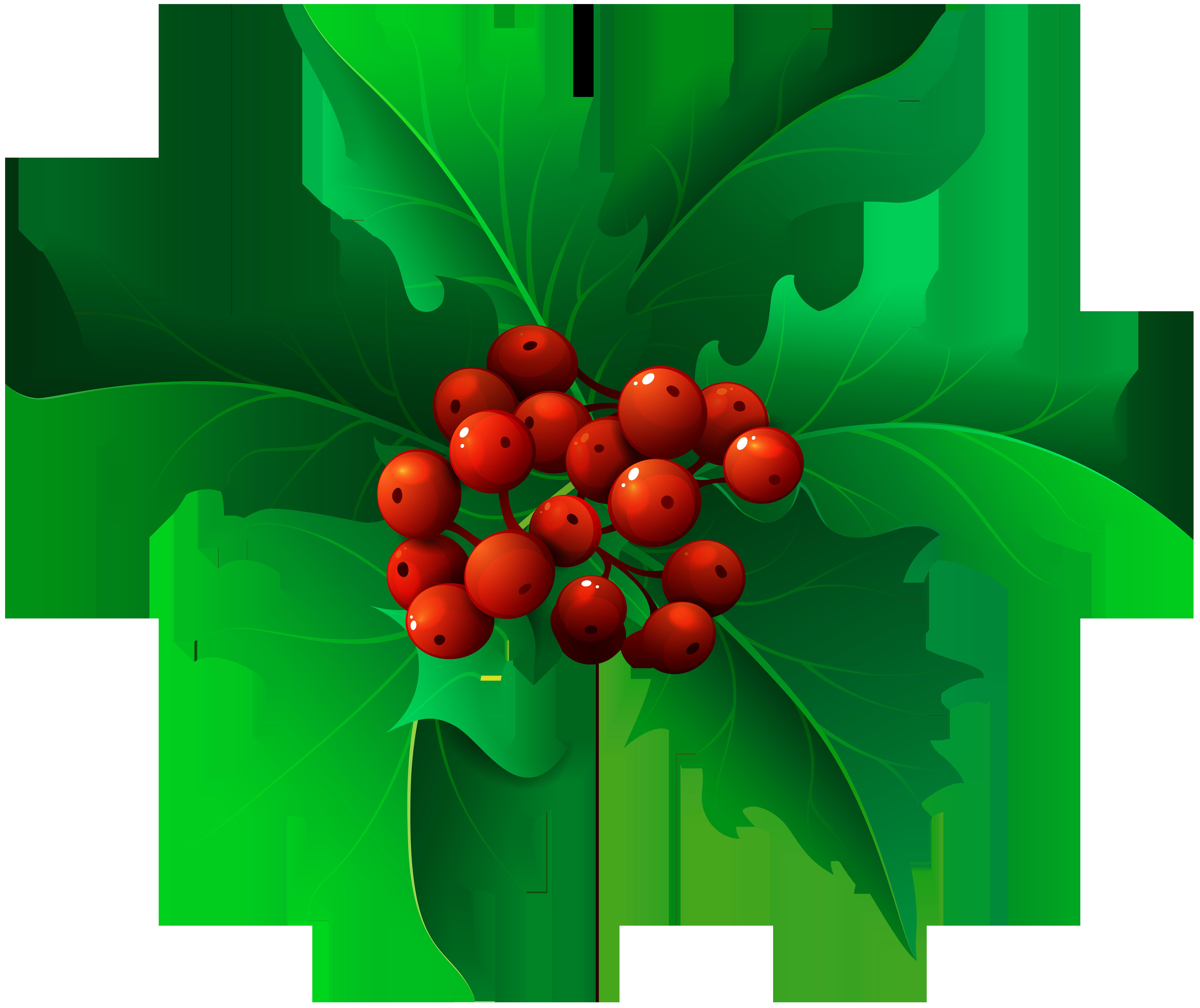 Mistletoe transparent png clip. Clipart christmas holly