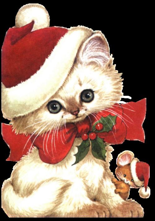 kitten clipart christmas