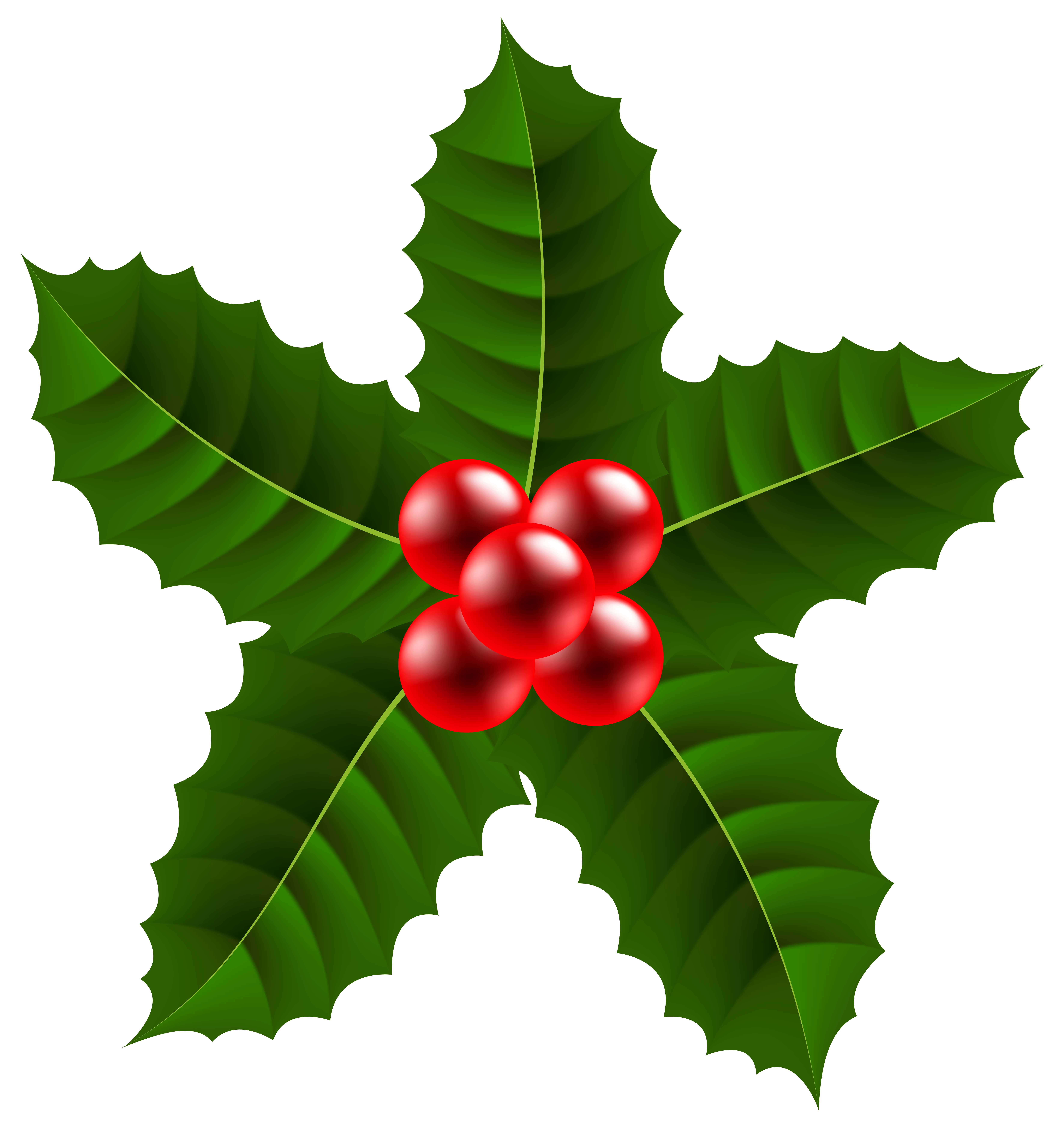 Christmas Holly Clip Art.Holly Clipart Free Download On Webstockreview