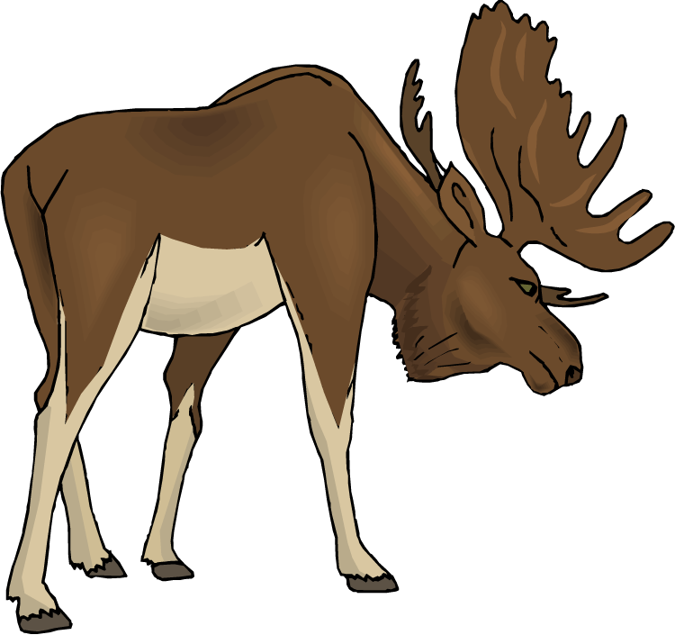 Deer clipart realistic. Moose cartoon free images