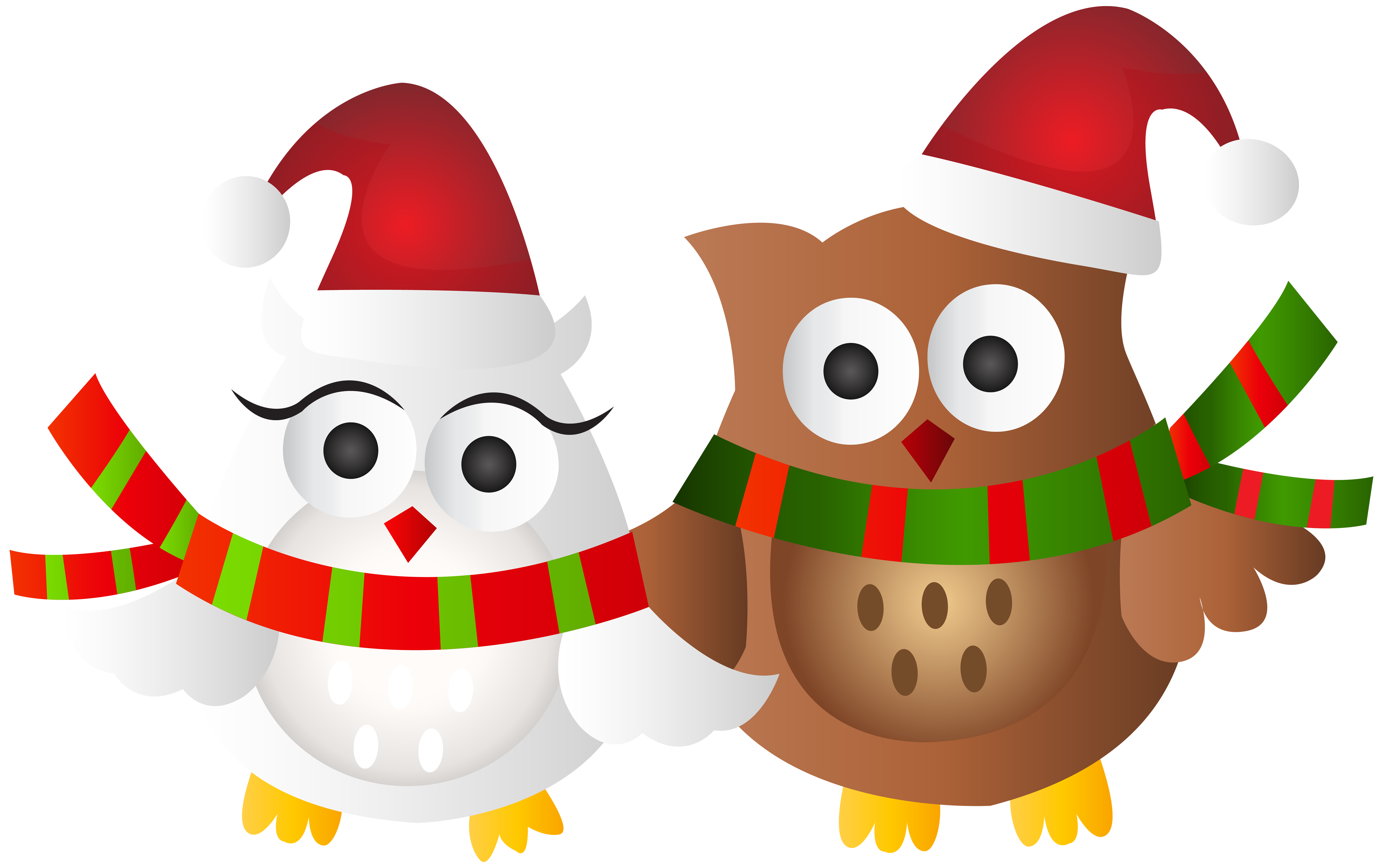 Transparent clip art image. Owls clipart christmas