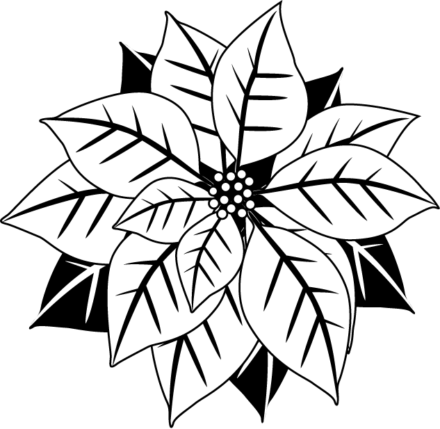 Poinsettias clipart banner.  collection of christmas