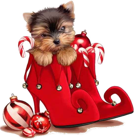 Grave clipart dog. Merry christmas canine pinterest