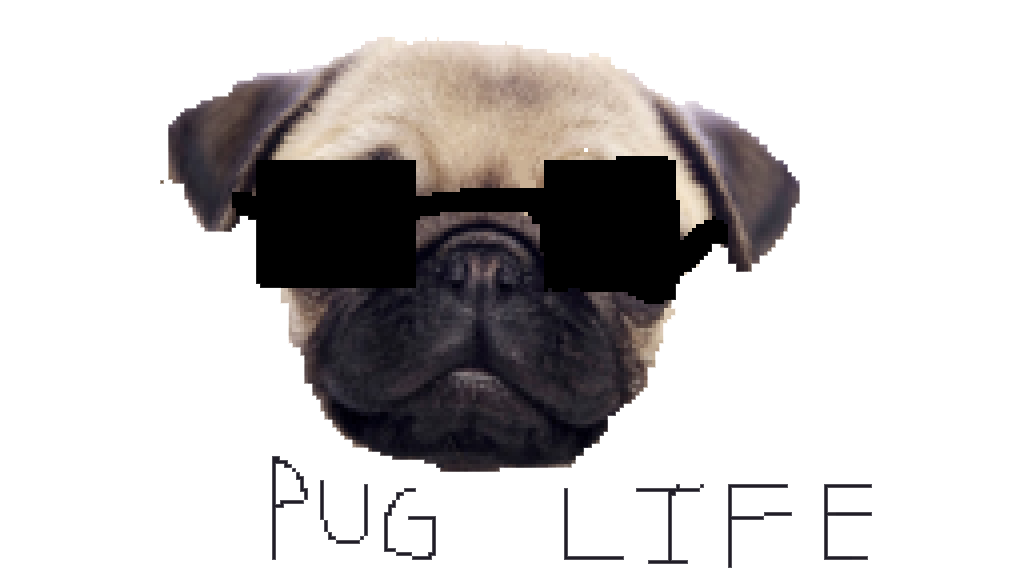 Clipart dogs pug. Life png peoplepng com