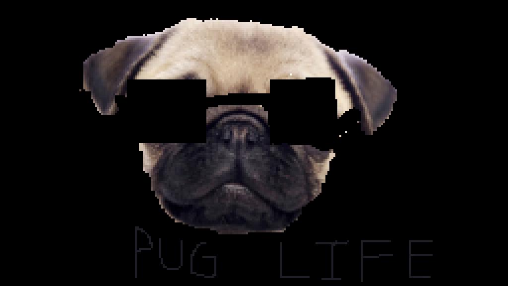 Clipart christmas pug. Life png peoplepng com