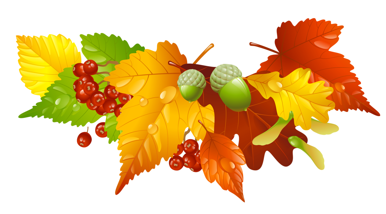 Autumn and acorns decor. Clipart halloween leaves