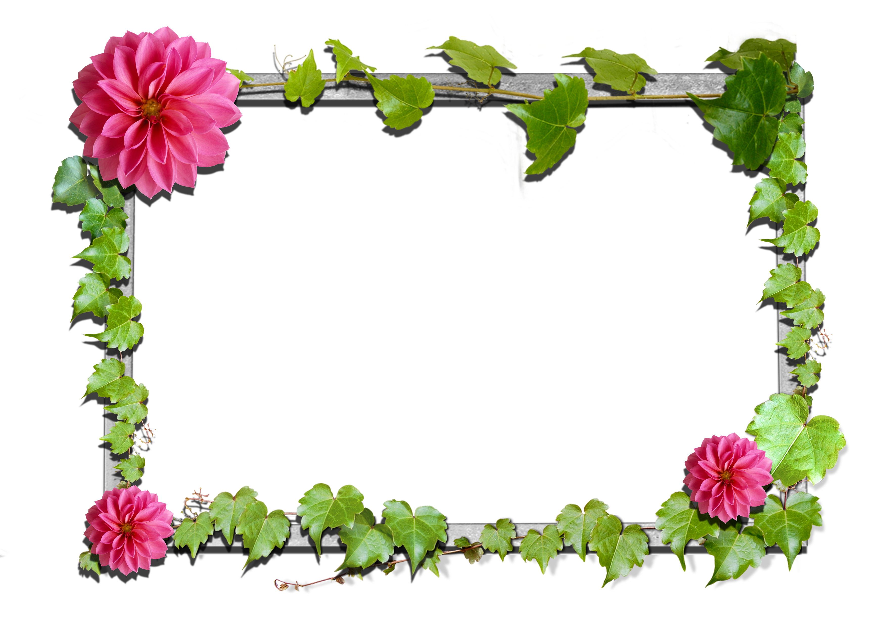Frames clipart flower. Flowers frame gallery yopriceville