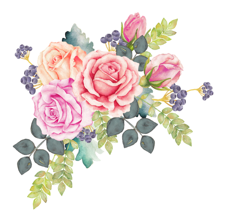 f c a. Clipart rose watercolor