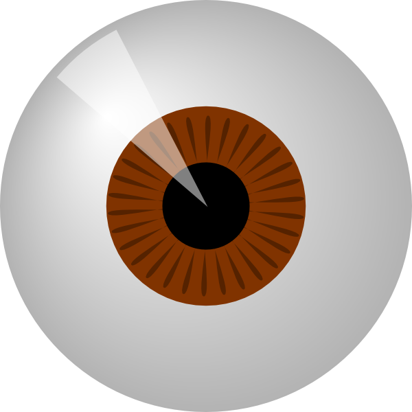 Brown eye clip art. Eyeball clipart large