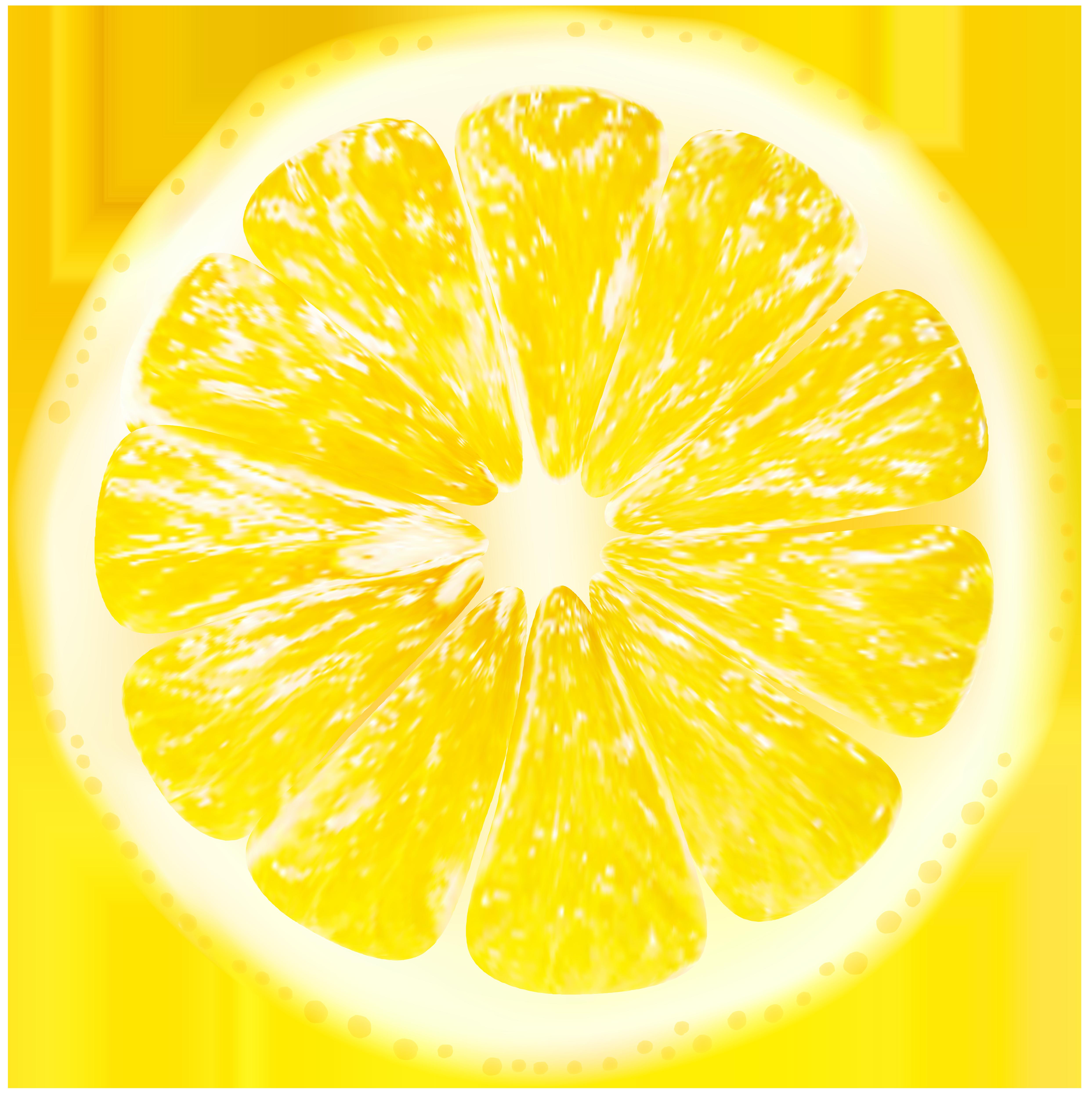 Lemon slices png clip. Lemons clipart transparent background