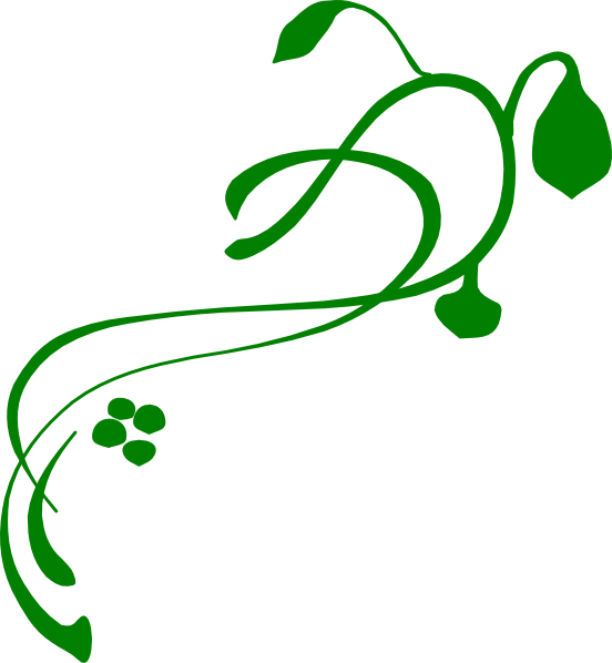vines clipart green