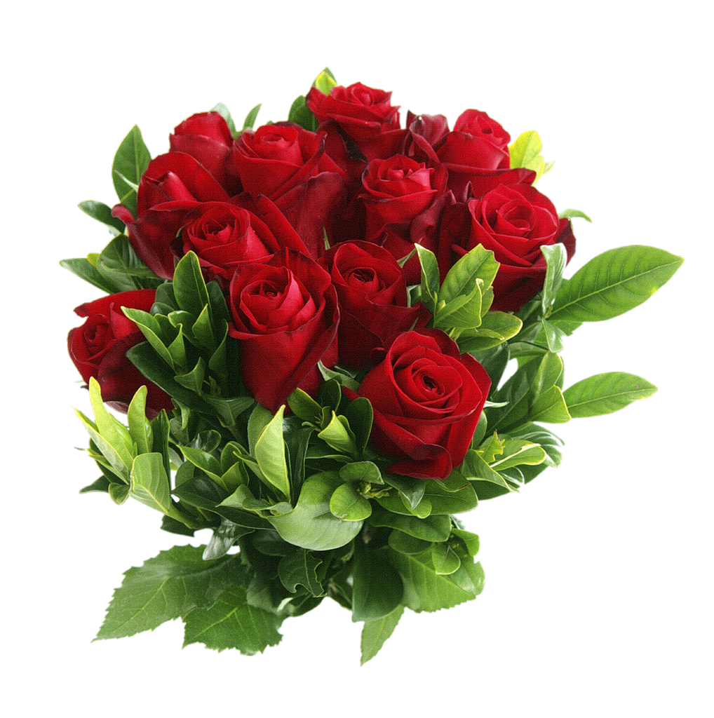 Of red roses isolated. Hands clipart bouquet