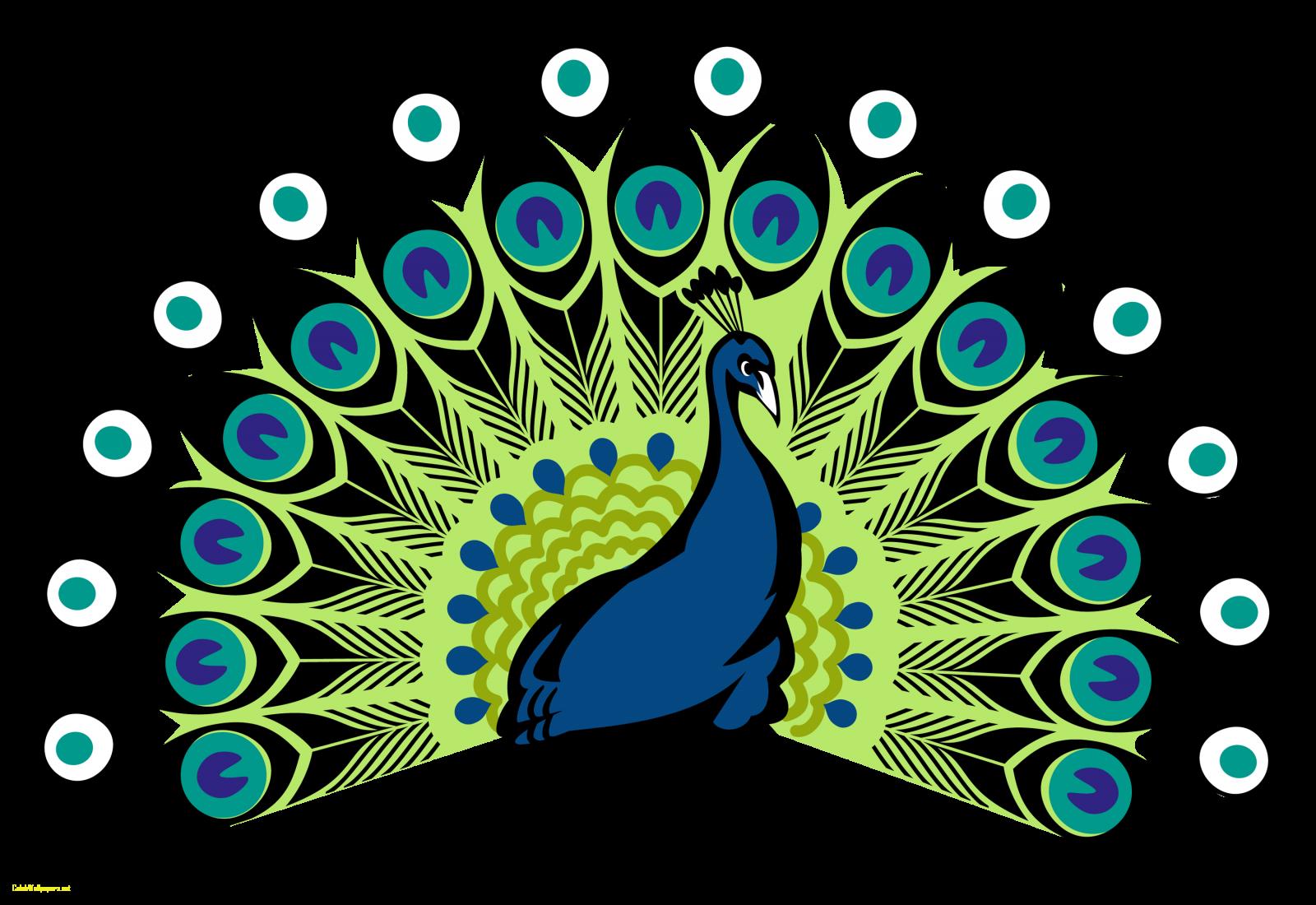 Clipart designs peacock. Peafowl drawing symbol coat