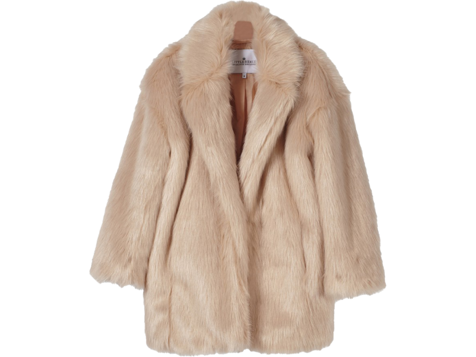 Coat mink coat