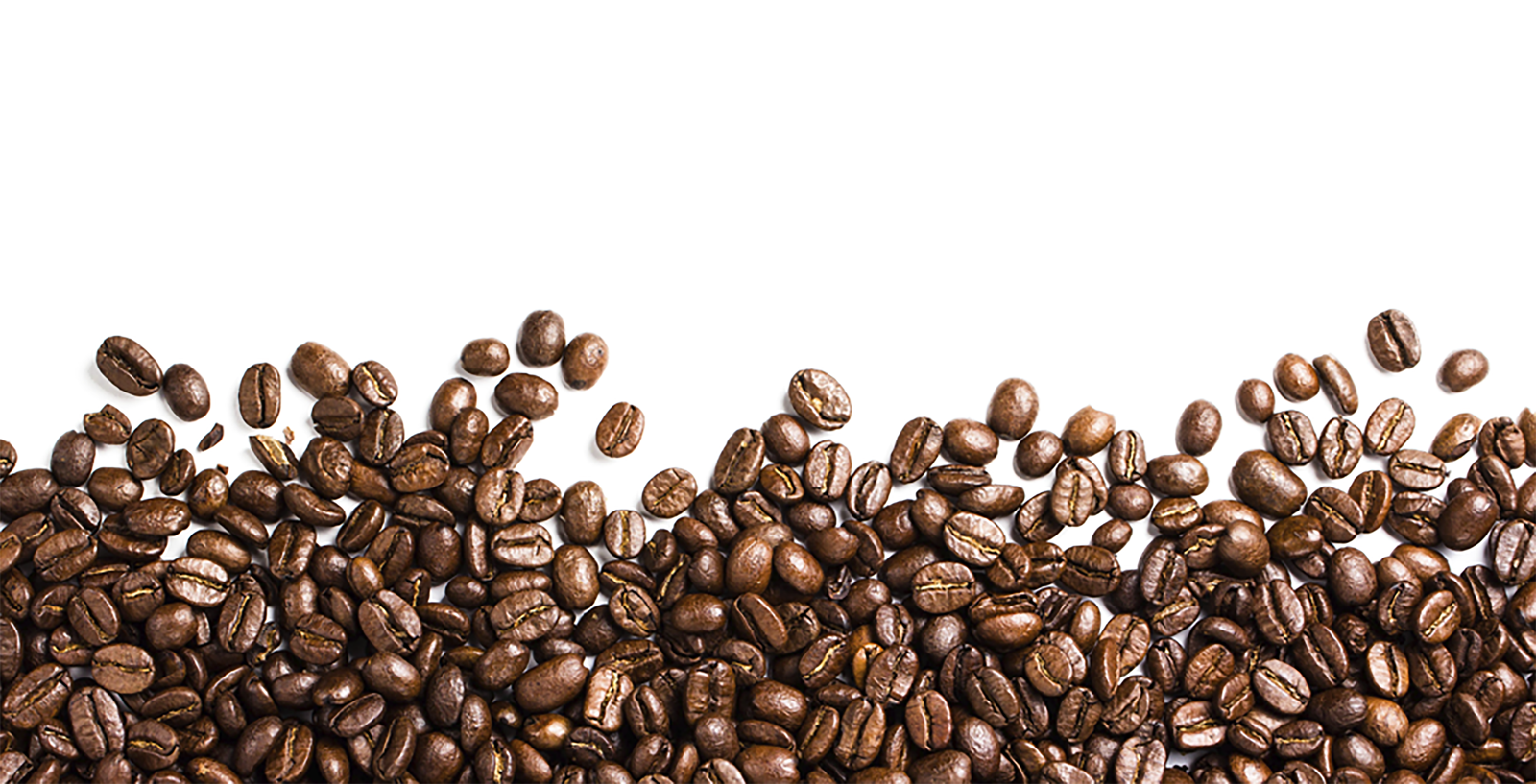 Clipart coffee coffee powder. Beans png images free