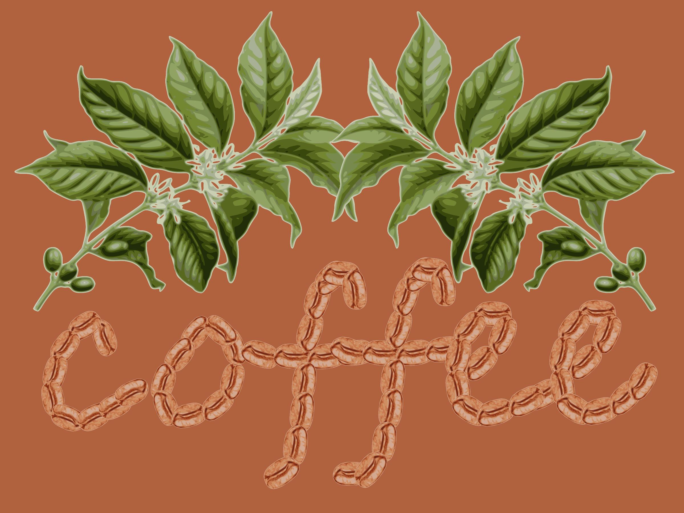 Design clipart coffee.