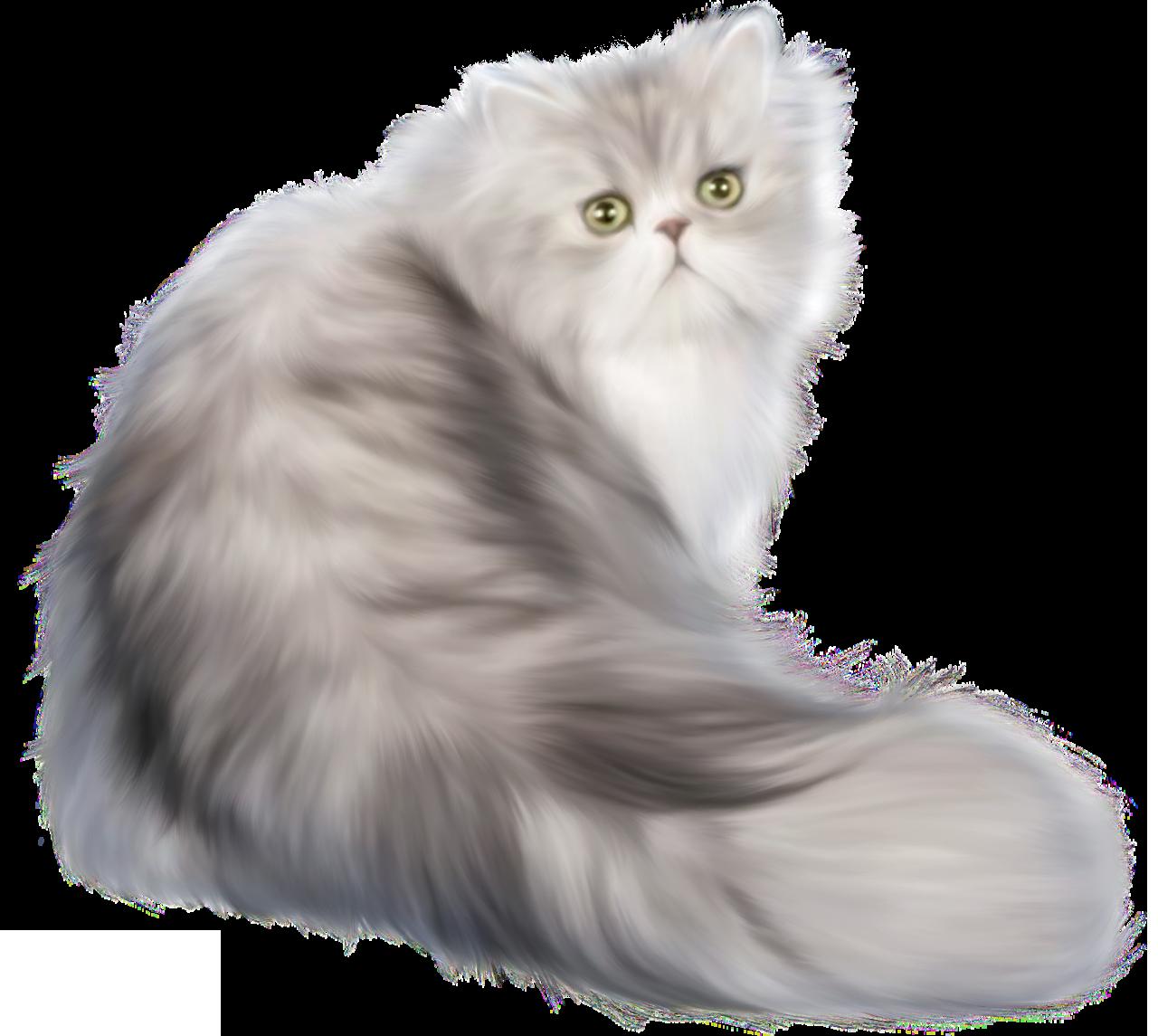 Kittens clipart cate. Cat png clip art