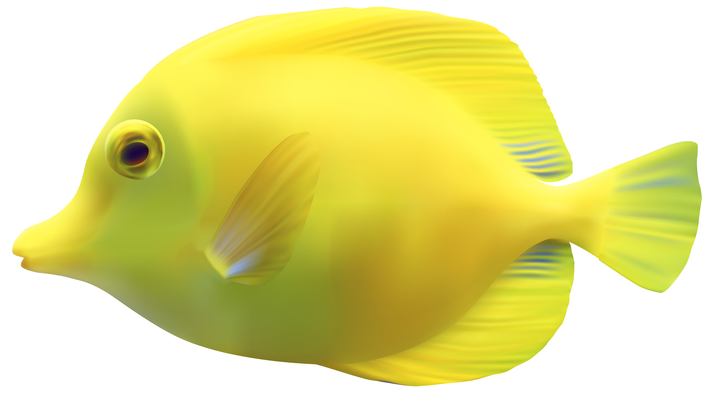 Name clipart fish. Yellow zebrasomatang png best