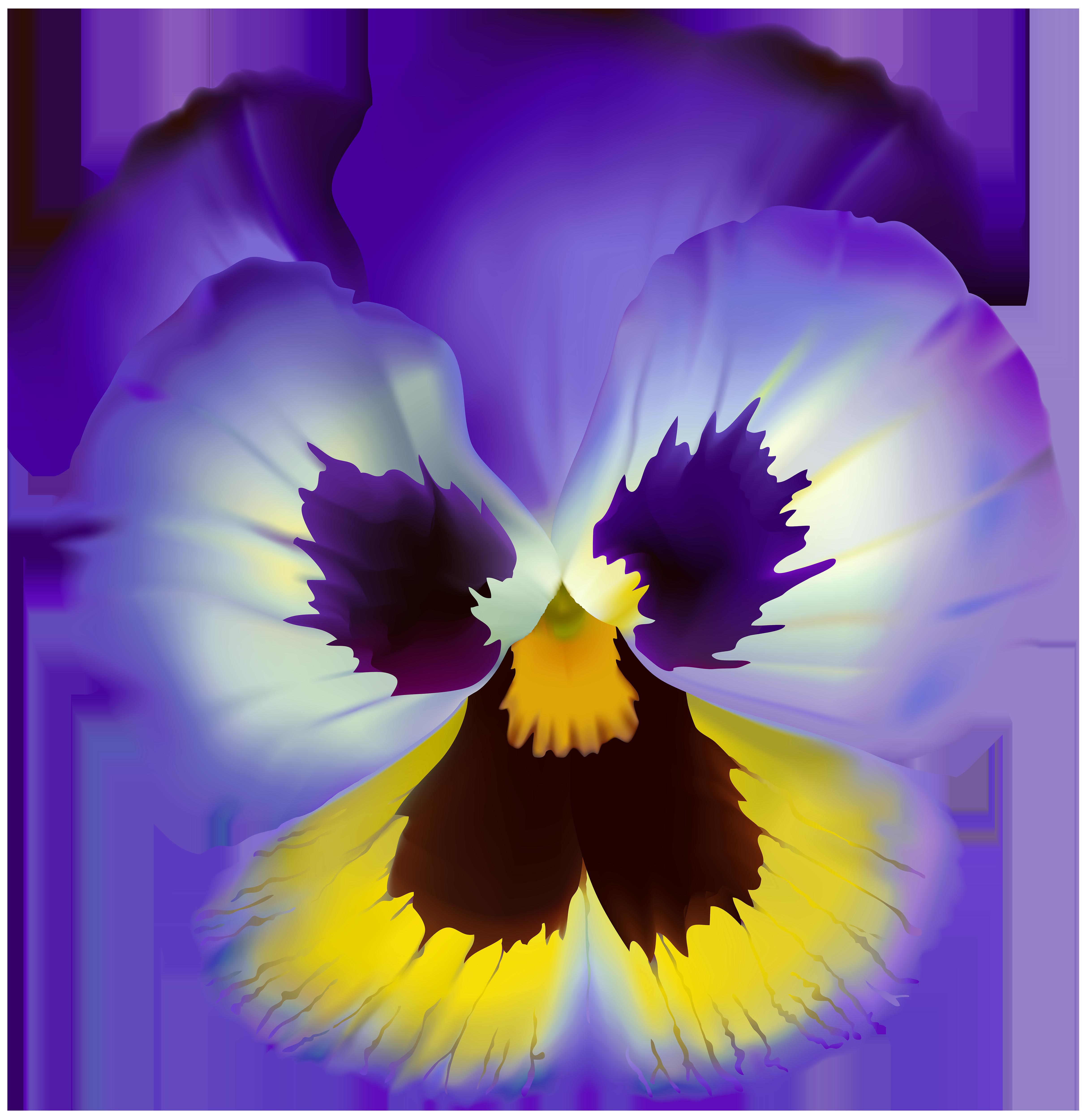 Violet flower transparent clip. Clipart flowers purple