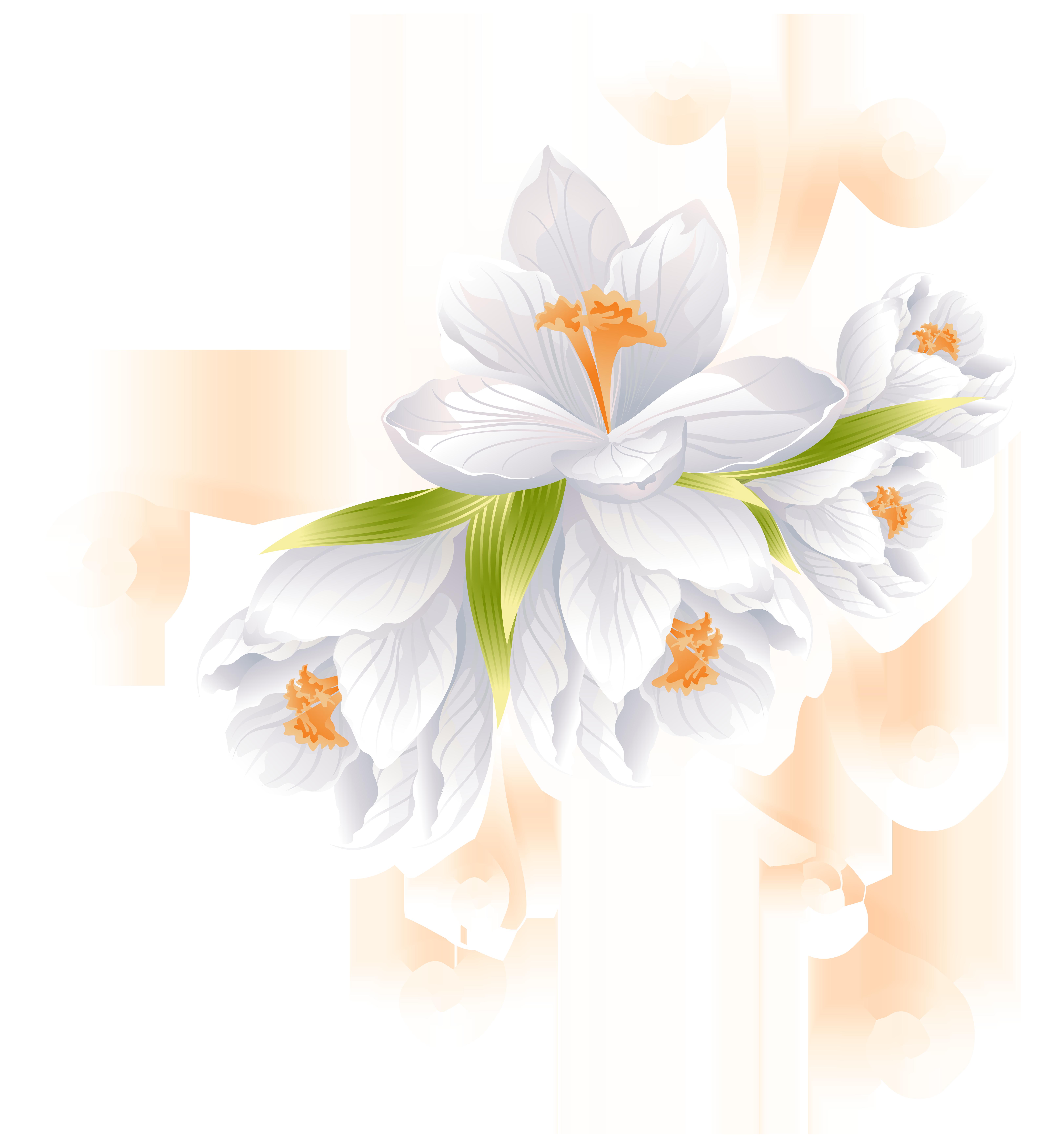 White decor transparent png. Clipart mountain flower