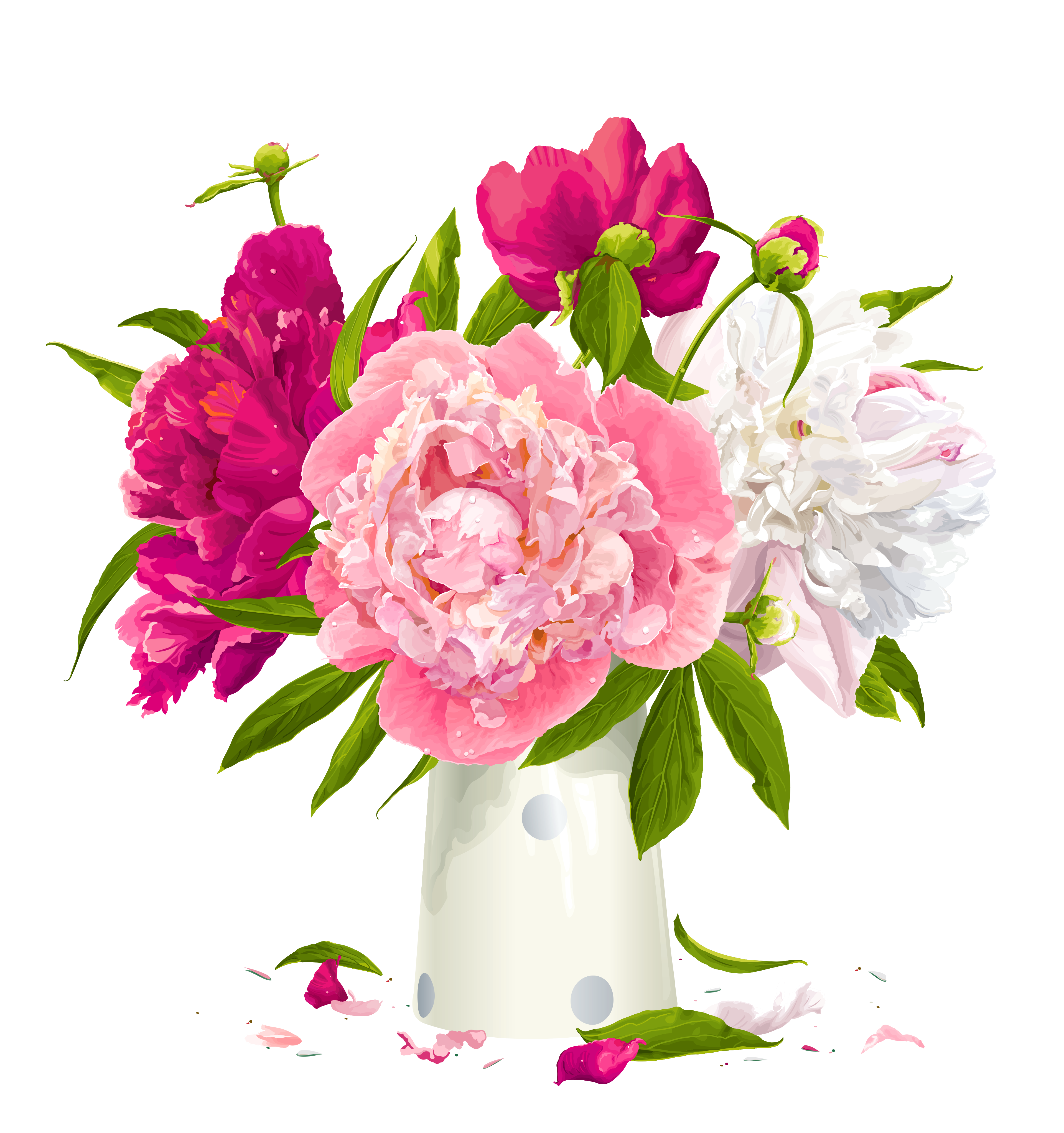 Vase with peonies gallery. Daisies clipart four flower
