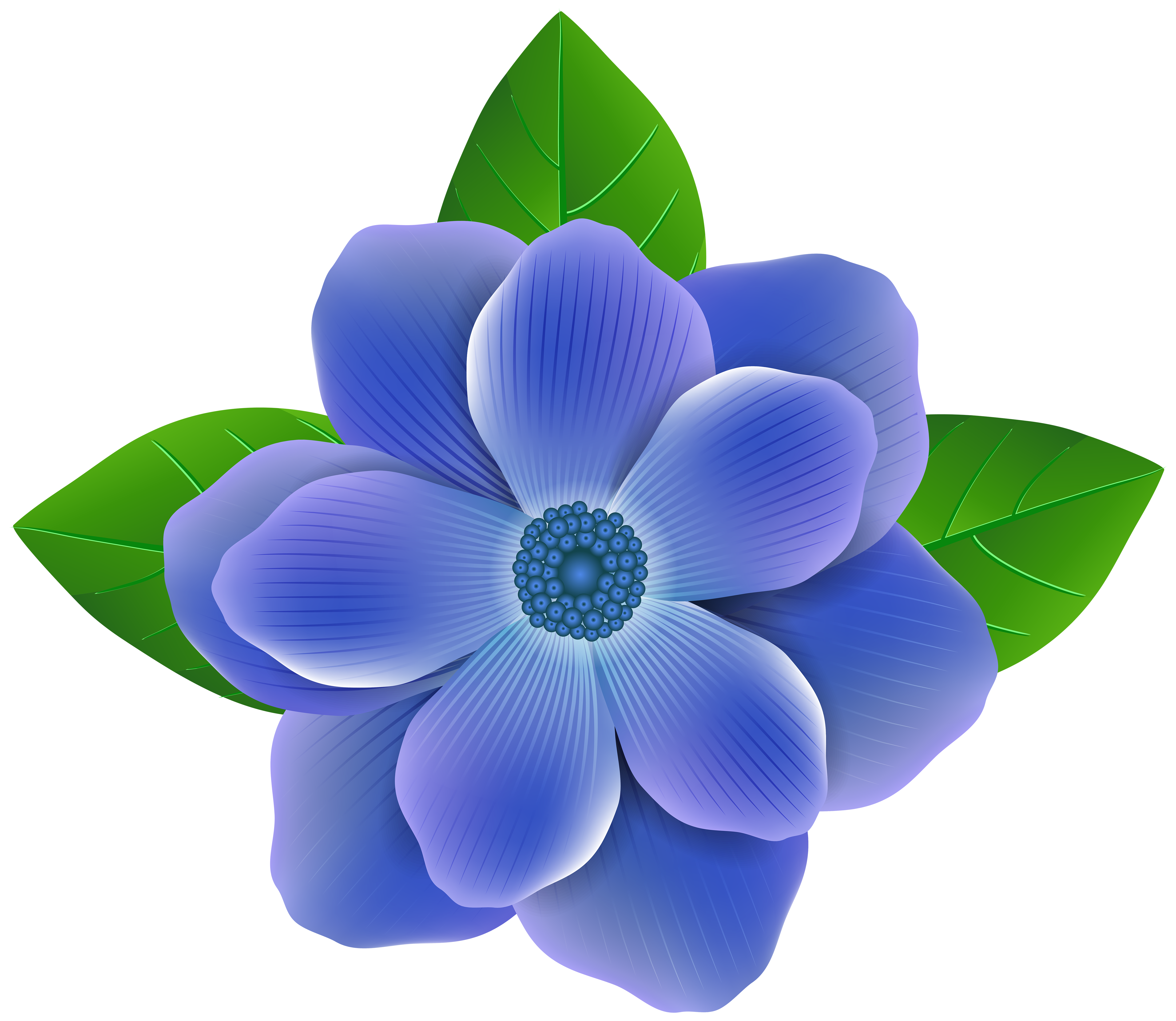 Blue flower png. Clip art image gallery