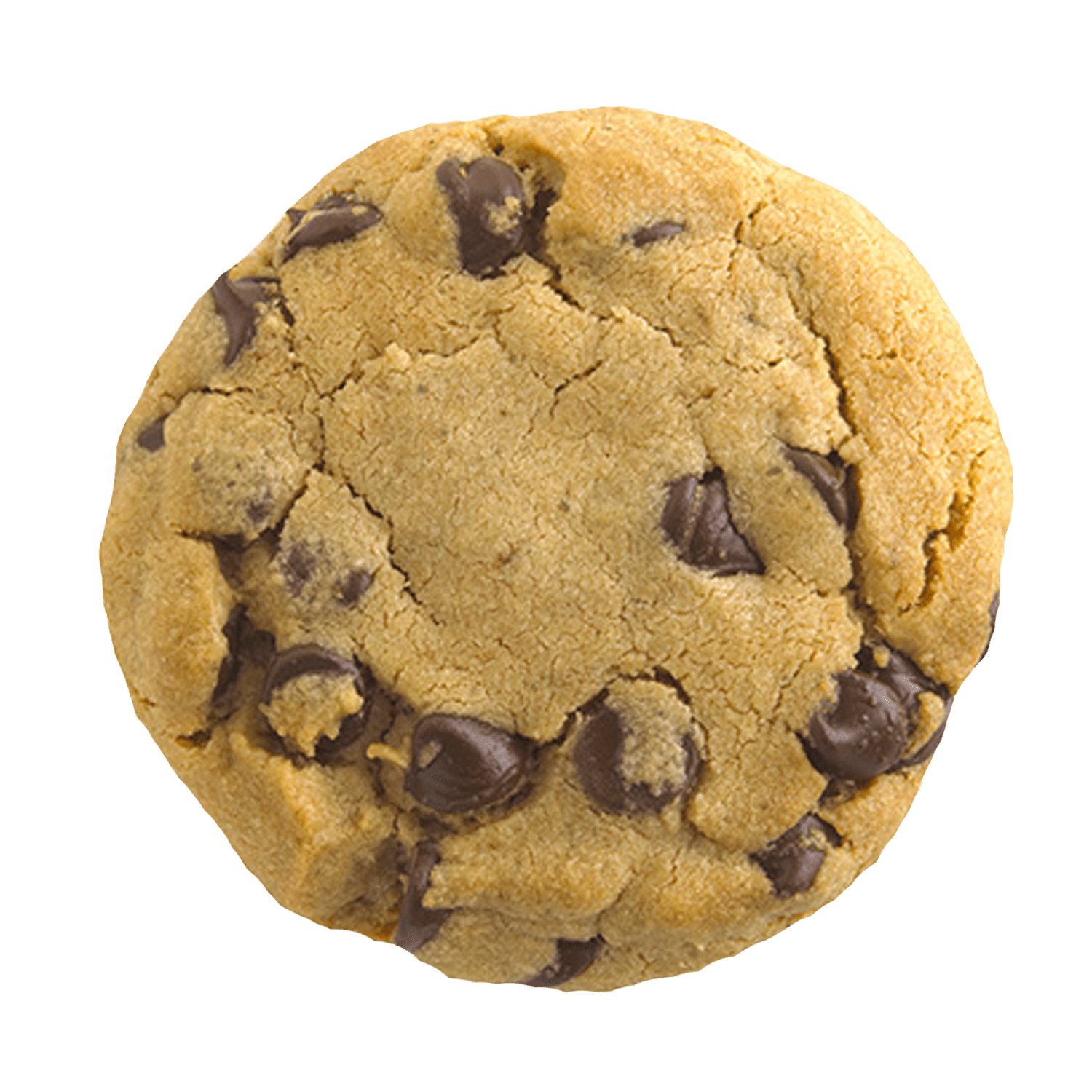 Cookies clipart oatmeal raisin cookie. Transparent png stickpng