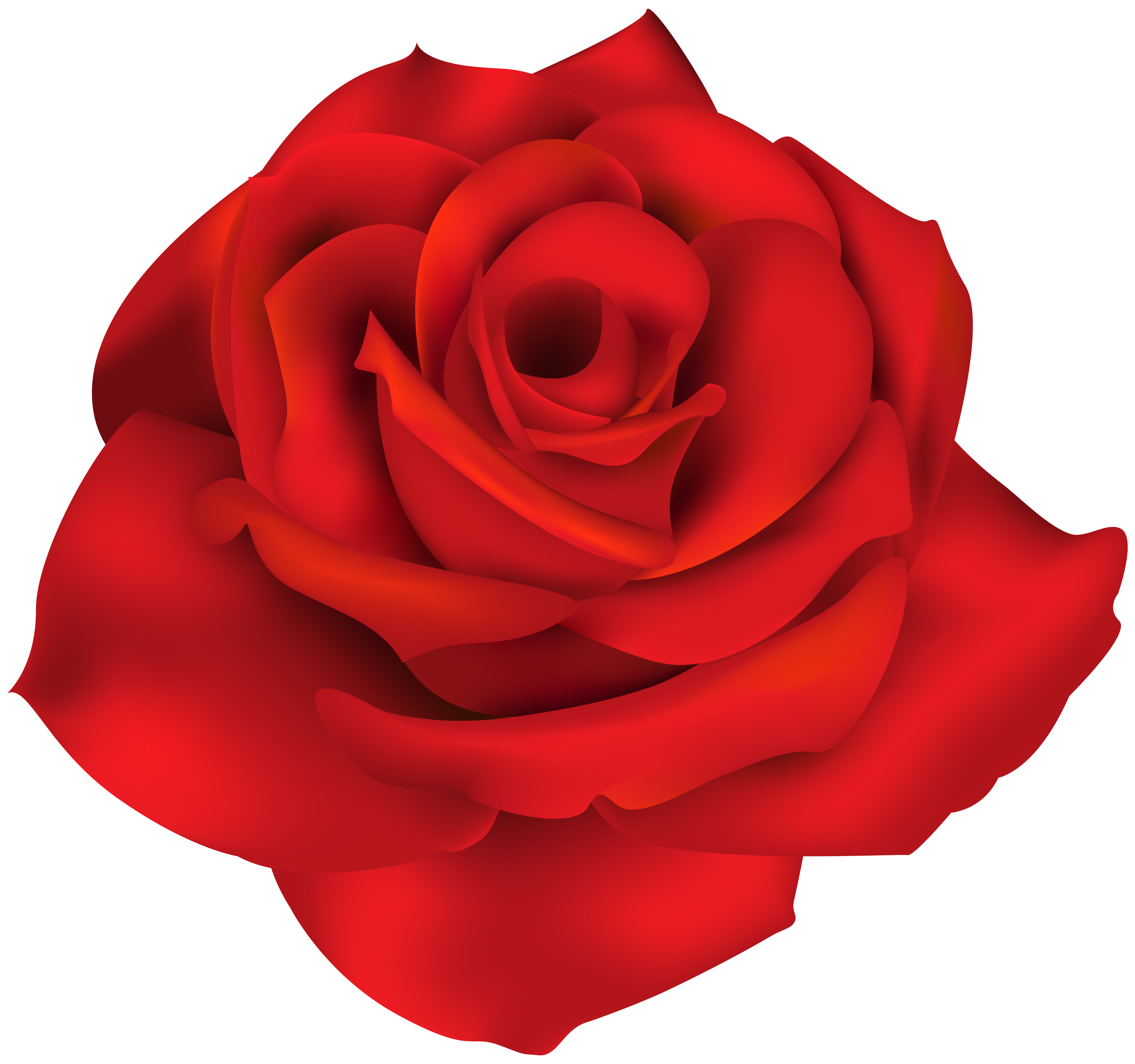 Rose clipart single. Red png clip art