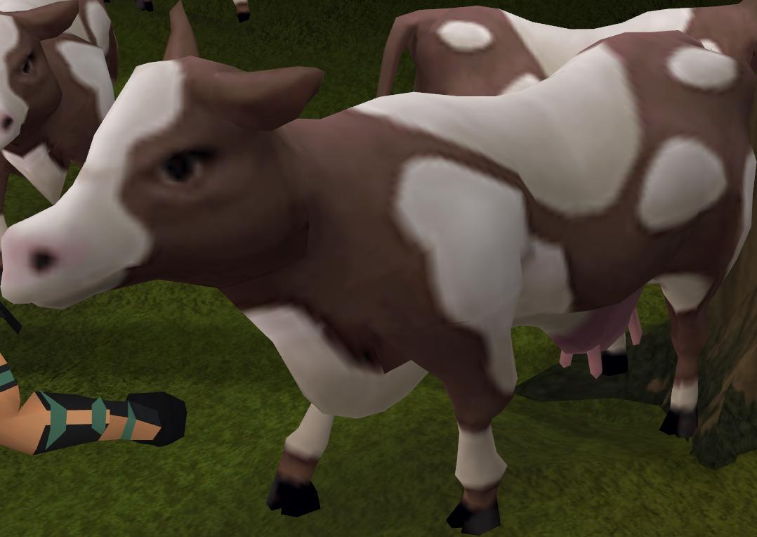 Cow runescape wiki fandom. Cows clipart bone