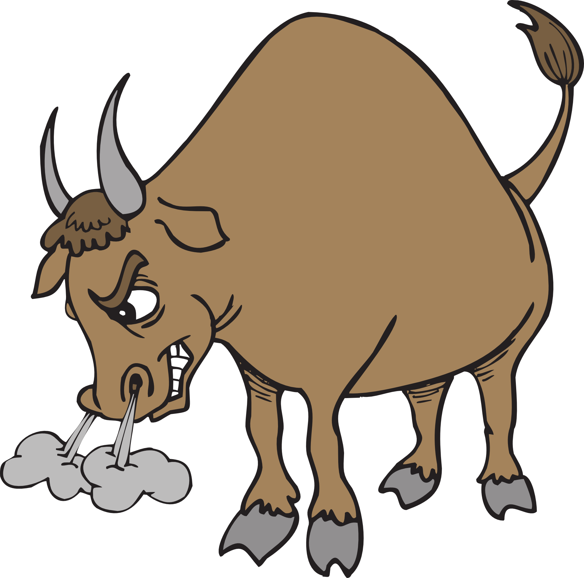 Hereford cattle texas bull. Ox clipart longhorn