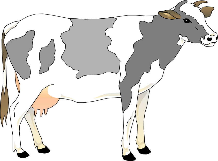 collection of free. Cows clipart vector