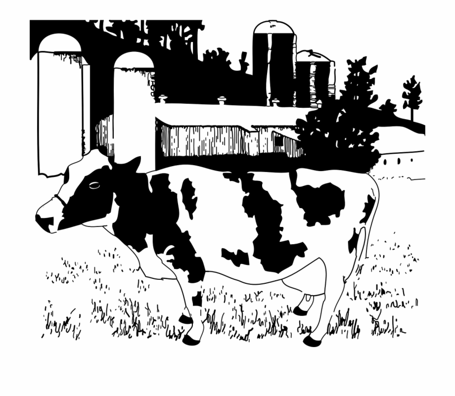 Farming clipart cattle farming. Farm animals dairy black