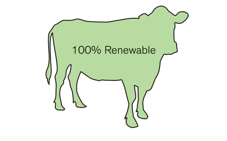 Our energy green uk. Cows clipart digestive system