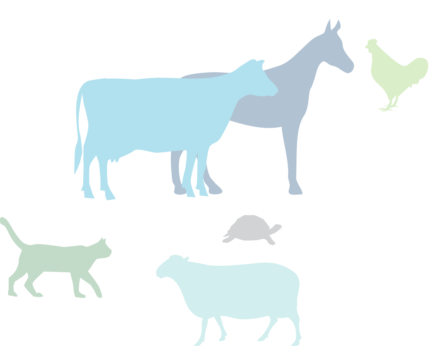 Clipart cow digestive system. Frontiers in veterinary science
