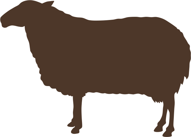 Countryside veterinary services at. Clipart cow digestive system