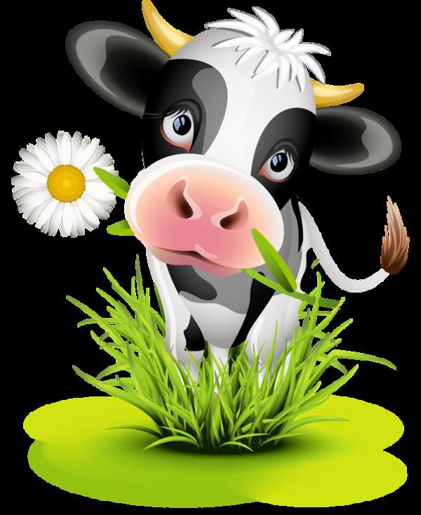 Cow in grass case. Head clipart holstein