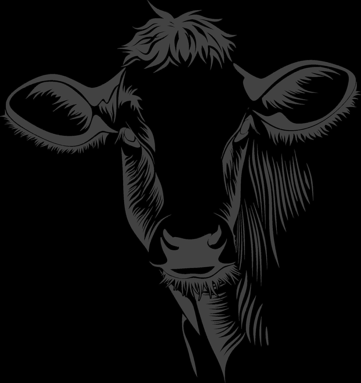 Cow clipart logo. Detailed line art big