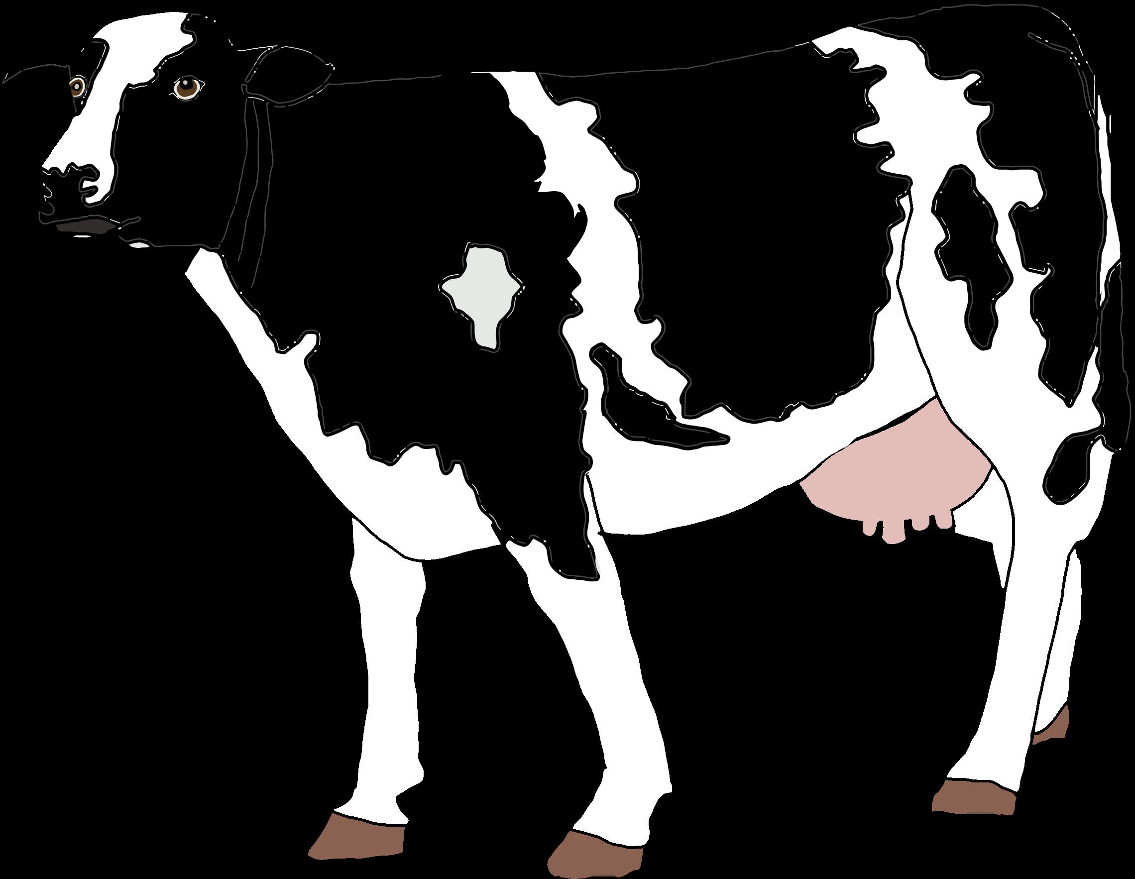Goat clipart realistic. Cow illustration big image