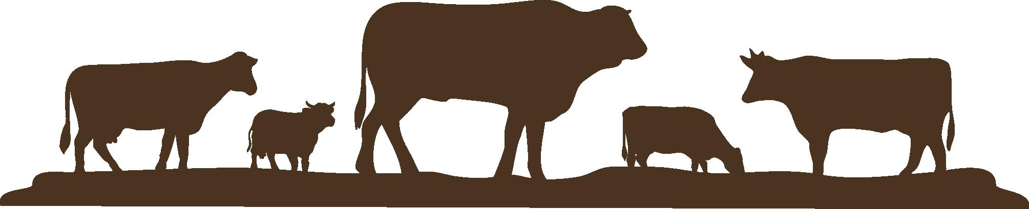 Clipart cow shadow. Farm info reese cattle