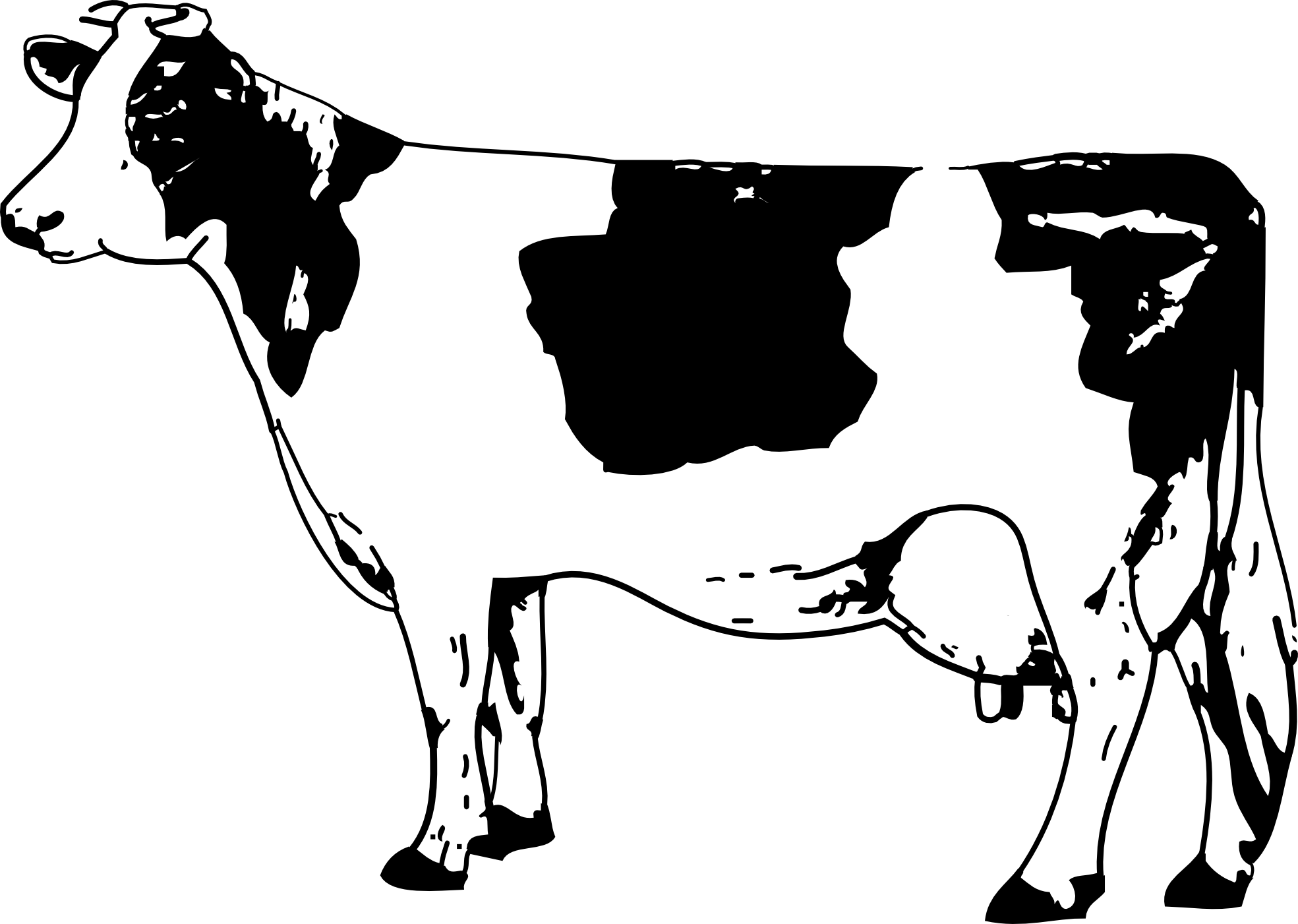 Clip art arts for. Clipart cow transparent background
